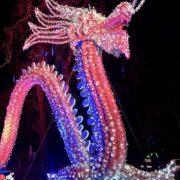 festival des lanternes chinoises